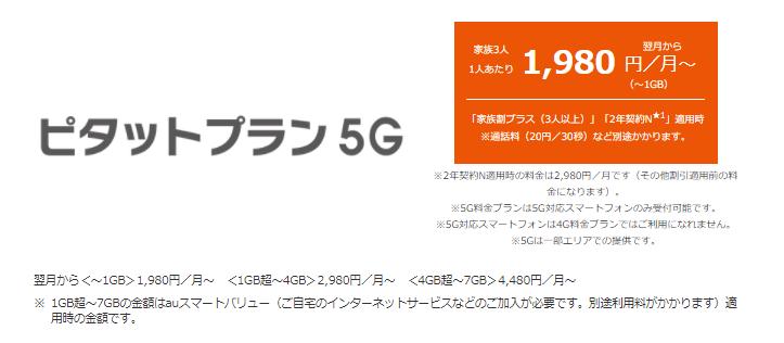 ピタットプラン 5G